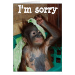 Apology I'm Sorry Greeting Card