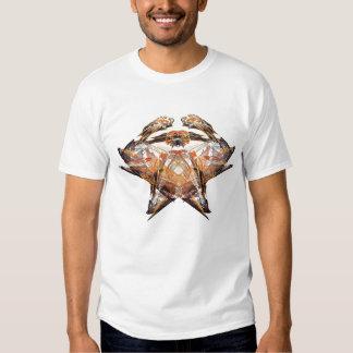 Apophysis-100524-167 Hugo Camisas