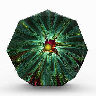 apophysis-421981 DIGITAL apophysis fractal flower Award