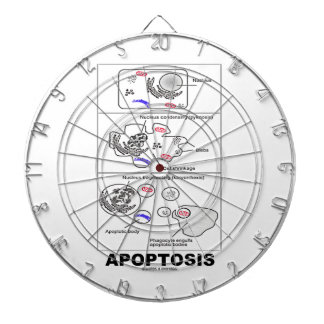 Apoptosis Biology Programmed Cell Death Dart Board