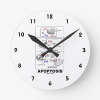 Apoptosis Biology Programmed Cell Death Round Wall Clock