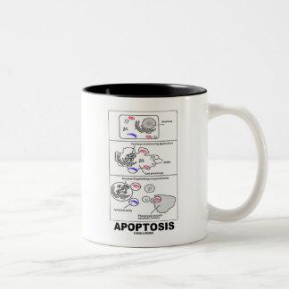 Apoptosis (muerte celular de la biología) tazas
