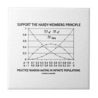 Apoye la práctica del principio de azulejo cuadrado pequeño