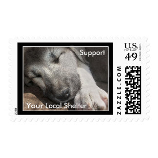 Apóyele refugio para animales local timbres postales