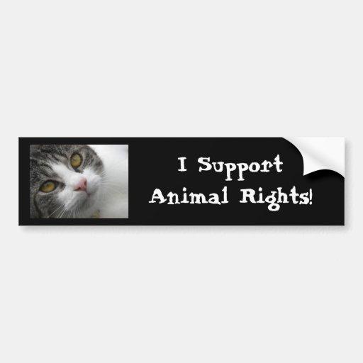 Apoyo los derechos de los animales Bumpersticker Pegatina Para Auto