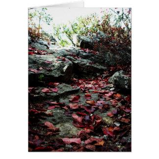 Appalachain Trail #10 Card