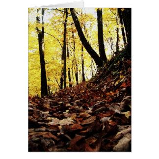 Appalachain Trail #6 Card