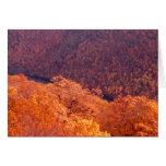 Appalachian Autumn Greeting Cards