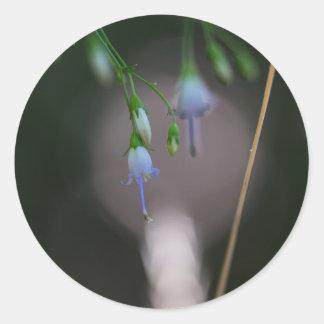 Appalachian Bellflower Blue Wildflower Stickers