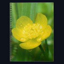 Appalachian Buttercup Notebook
