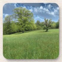Appalachian Green Cork Coaster