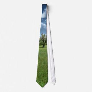 Appalachian Green Tie