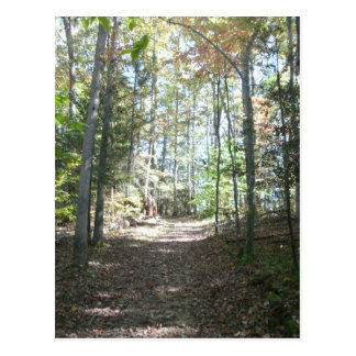 Appalachian Hiking Trail Postcard