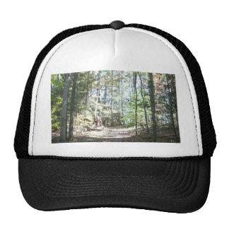 Appalachian Hiking Trail Trucker Hat