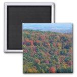 Appalachian Mountains in Fall Magnet