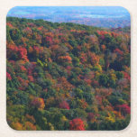 Appalachian Mountains in Fall Nature Photography Square Paper Coaster