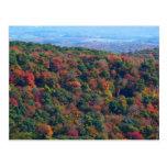 Appalachian Mountains in Fall Postcard