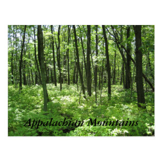 Appalachian Mountains Post Cards