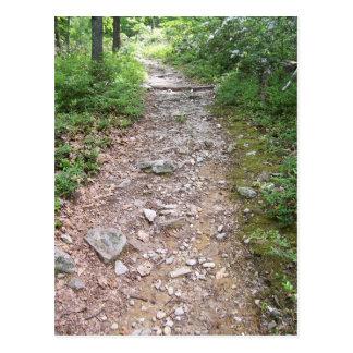 Appalachian rocky trail postcard