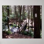 Appalachian Trail bridge at Laurel Fork Tennessee Print