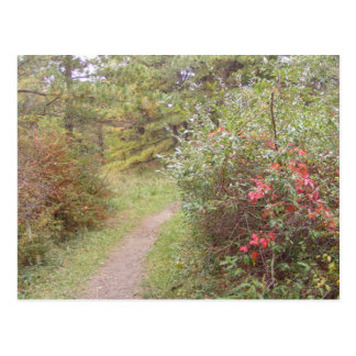 appalachian trail fall pennsylvania postcard