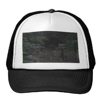 appalachian trail footpath sign dusk hats