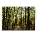 Appalachian Trail in October at Shenandoah Card