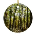 Appalachian Trail in October at Shenandoah Ceramic Ornament