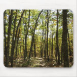 Appalachian Trail in October at Shenandoah Mouse Pad