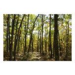 Appalachian Trail in October at Shenandoah Photo Print