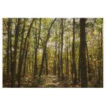 Appalachian Trail in October at Shenandoah Wood Poster