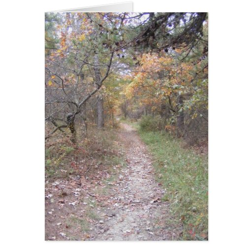 appalachian trail pennsylvania fall greeting card