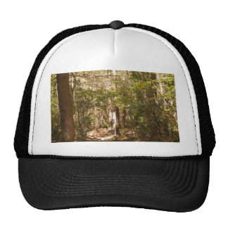 appalachian trail pennsylvania trucker hat