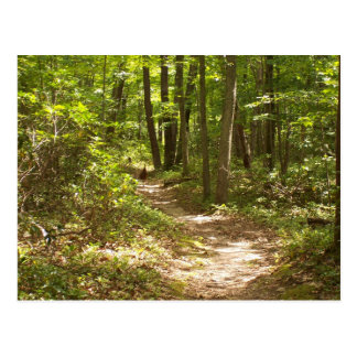 appalachian trail pennsylvania turkeys postcard