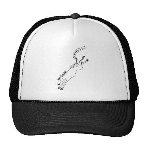 Appaloosa Attitude Hat