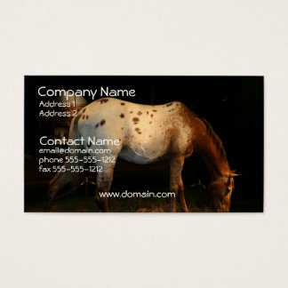 Appaloosa Business Card