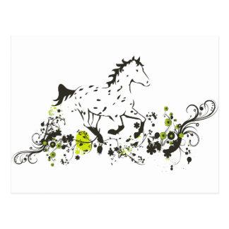 Appaloosa del leopardo con la impresión floral tarjetas postales
