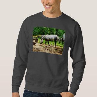 Appaloosa Eating Hay Pullover Sweatshirt