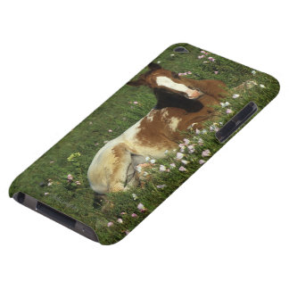 Appaloosa Foal Laying Down in Flowers Barely There iPod Cover