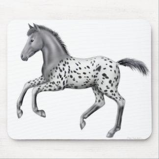 Appaloosa Foal Mousepad