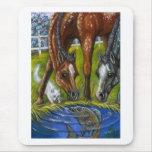 APPALOOSA FOALS Horse Fish Pond Mousepad