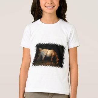 Appaloosa Girl's T-Shirt