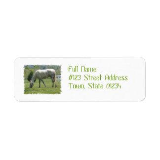 Appaloosa Grazing Return Address Label