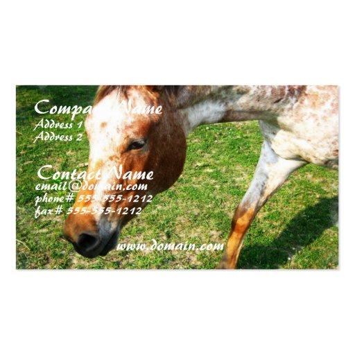 Appaloosa Horse Business Card