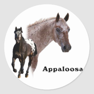 Appaloosa Horse Classic Round Sticker