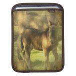 Appaloosa Horse Collage iPad Sleeve