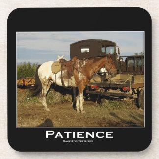 Appaloosa Horse Equine Animal Photo Art Coasters
