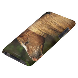Appaloosa Horse Headshot 1 Barely There iPod Cover