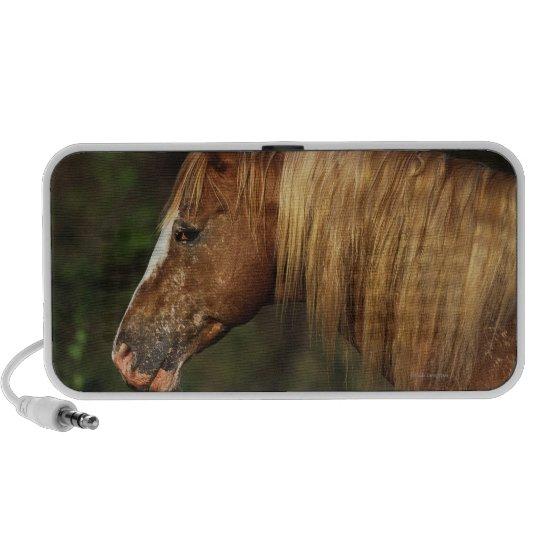 Appaloosa Horse Headshot 1 Mini Speaker