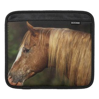 Appaloosa Horse Headshot 1 Sleeve For iPads